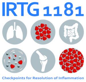 IRTG 1181 Logo